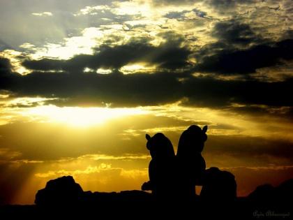 Crepúsculo en Persépolis